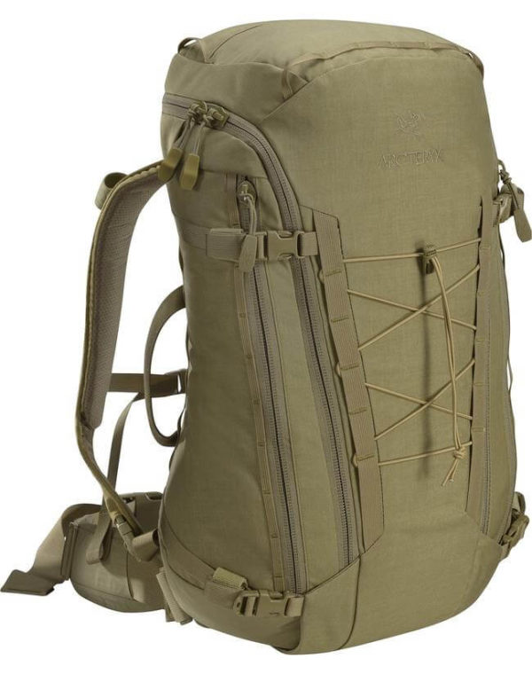 Leaf_Program-Arcteryx-Assault-Pack-30-Crocodile